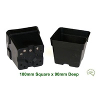 100mm Square Pot